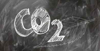 Una hoja artificial convierte el dióxido de carbono atmosférico en combustible